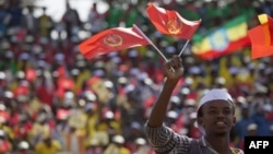 A youth waves the ruling party Ethiopian People's Revolutionary Democratic Front (EPRDF) flag in front of a large crowd during an election rally by the EPRDF in Addis Ababa, May 21, 2015.