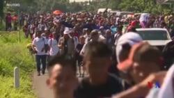 反移民活動人士把移民大軍當作政治禮品