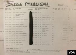 纽约美国移民法庭布告栏6月9日审理名单(美国之音方冰拍摄)