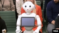 The humanoid robot Pepper testifies before the Education Committee in Britain's House of Commons in London, England, on Tuesday October 16, 2018. (Video Screenshot)