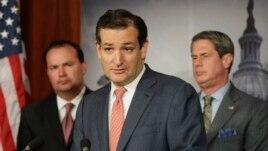Thượng nghị sĩ Cộng hòa Ted Cruz (giữa) được xem là kiến trúc sư chính của vụ giằng co ngân sách một mất một còn.