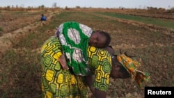 FILE - A woman, with a child on her back, is seen planting beans on a farm in Heremakono, Mali.