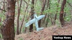 한국 강원도 전방 지역 야산에서 9일 북한군 무인기로 추정되는 비행체가 발견됐다. 한국 합동참모본부는 이 비행체가 2014년 3월 백령도에서 발견됐던 북한 소형 무인기와 크기, 형태 등이 유사하다.