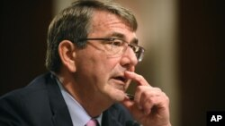 Menteri Pertahanan Amerika, Ashton Carter (foto: dok).