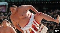 Hội Sumo Nhật Bản hủy bỏ các cuộc tranh tài mùa Xuân