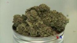 2017-12-31 美國之音視頻新聞:加州將把消閑大麻合法化