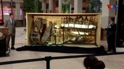 Vaşinqtonda yerləşən müzeyə nəhəng dinozavr gəlir