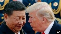 도널드 트럼프 미국 대통령(오른쪽)과 시진핑 중국 국가주석이 지난해 11월 베이징 인민대회당 환영식에서 얼굴을 맞대고 대화를 나누고 있다.