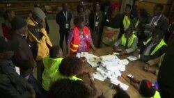 津巴布韋執政黨贏得議會多數席位