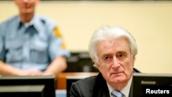 Ex-Bosnian Serb leader Radovan Karadzic sits in the court of the International Criminal Tribunal for former Yugoslavia (ICTY) in the Hague, the Netherlands, March 24, 2016. (REUTERS/Robin van Lonkhuijsen/Pool)