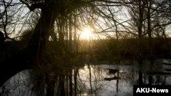 Mặt trời mọc trên một hồ nước đã đóng băng gần Sainte-Gauburge-Sainte-Colombe, miền tây nước Pháp, ngày 28/12/2014.