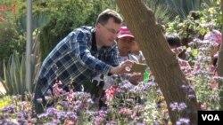 Kepala sekolah Brad Rumble dari SD Esperanza di Los Angeles membantu murid-muridnya mendokumentasikan spesies tanaman. (M. O'Sullivan/VOA)