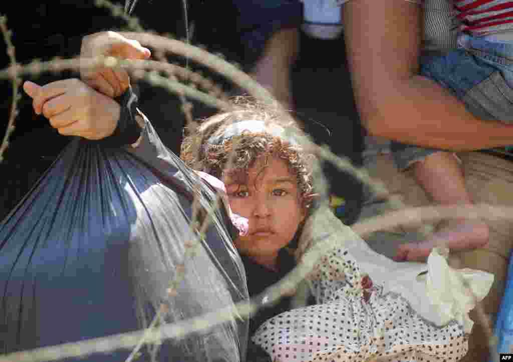 Para migran menunggu polisi Makedonia untuk mengijinkan mereka melewati perbatasan antara Yunani dan Makedonia dekat kota Gevgelija.