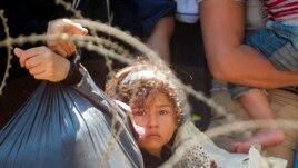 BE-ja kërkon takim të posaçëm për krizën e imigrantëve
