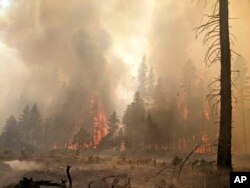 FILE - Trees burn at the Bootleg Fire in southern Oregon, July 25, 2021, in this photo provided by the Bootleg Fire Incident Command.