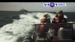 Manchetes Africanas 30 Março 2017: Na busca de pesca ilegal na Guiné-Bissau
