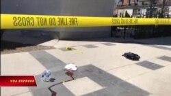Nghi phạm lao xe giết người ở Toronto ra tòa