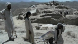 Afghan Archeologists Race Against Time to Find Treasures