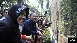 Menteri Kehutanan Zulkifli Hasan dan Walikota Surabaya Tri Rismaharini melihat kondisi kandang di Kebun Binatang Surabaya, Senin (18/8). (VOA/Petrus Riski)