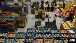 资料照:台湾屏东的工人正在一个货仓里整理装箱凤梨。(2021年3月16日)