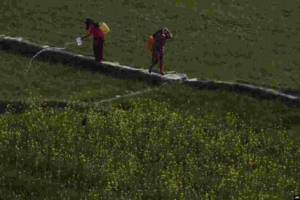 زنان نپالی در حال حمل آب آشامیدنی به منازلشان در باکتاپور، نپال