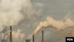 El ex ícono de Hollywood, Arnold Schwarzenegger, viajará a Copenhague para la conferencia internacional sobre cambio climático.