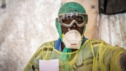 Working Together to Defeat Ebola
