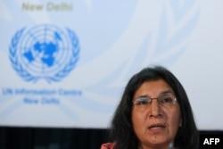 Rashida Manjoo gives a news conference in New Delhi, India, May 01 2013.