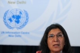 Rashida Manjoo gives a news conference in New Delhi, India, May 01 2013.