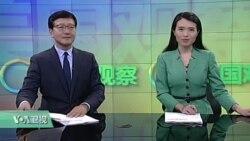 VOA卫视(2016年11月11日 美国观察)