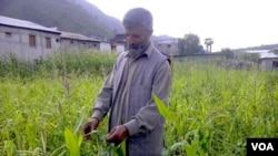 کسان نصیر احمد