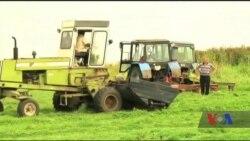 Американці допоможуть українським фермерам наростити експорт. Відео