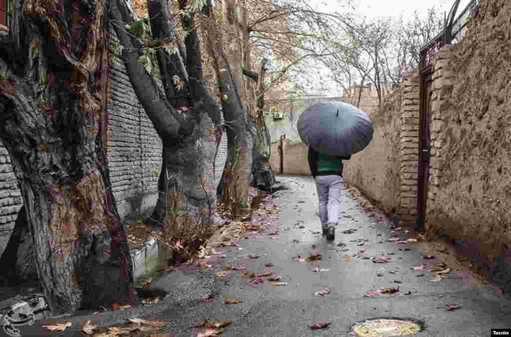 محله کن، روستایی در شمال غرب تهران با بافت معماری خشت و گل. با درخت های توت سفید اش عکس: مصطفی اصغری