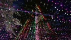 Australian Family Recaptures Christmas Light Record