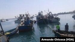 Peixeiras contra desalojamento determinado pelo Governo
