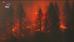 Scientists: Climate Change Making Western Wildfires Worse