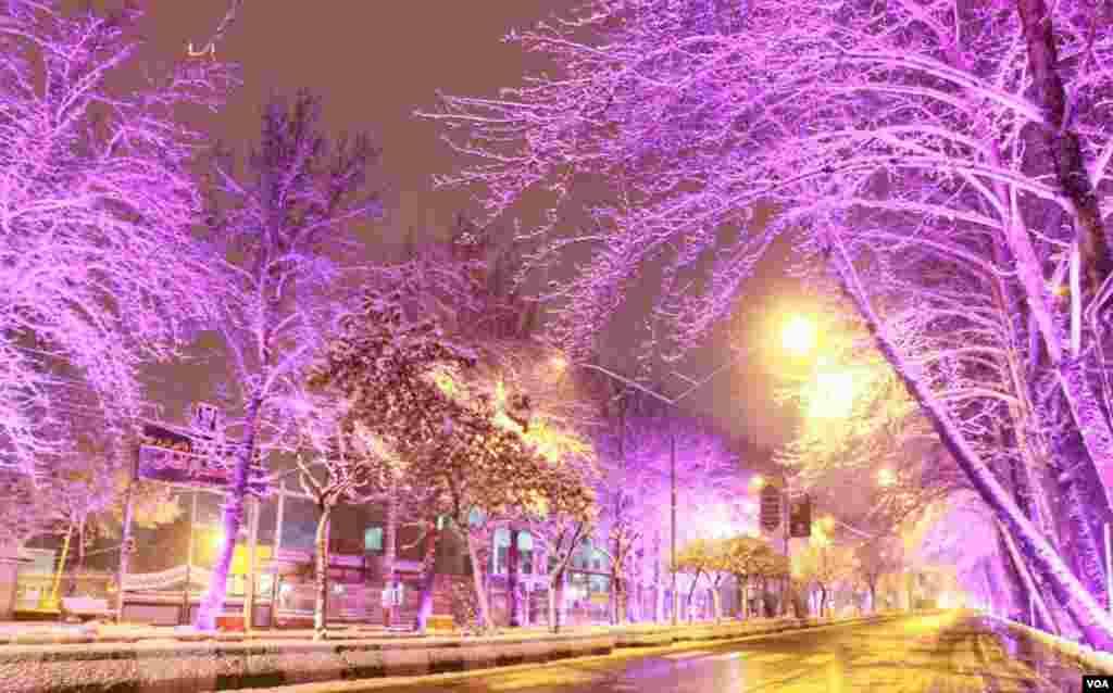 بارش برف در ارومیه عکس: سعید (ارسالی شما)