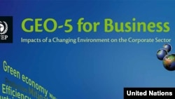 "Cover of UN's ""GEO-5 for Business: Impacts of a Changing Environment on the Corporate Sector"" report"
