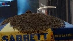 زنبورها در میدان تایمز نیویورک