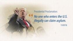 Explainer: Asylum Proclamation Court