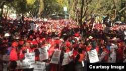 MDC Alliance ZEC March 3