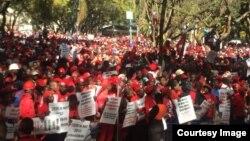 MDC Alliance ZEC March 3