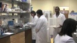 Promising Mosquito Repellent Announced