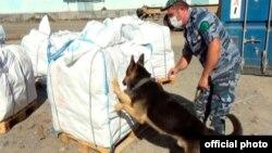 Azərbaycan gömrükçüləri narkotik partiyasının İrandan Polşaya aparılmasının qarşısını alıb