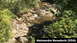 Park prirode Stara planina pod zaštitom je države od 1997.godine i obiluje vodotokovima, reka u selu Crni Vrh, Foto: VOA