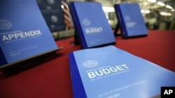 The newly published 2012 budget documents on display at the U.S. Government Printing Office in Washington, February 10, 2011