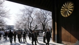 People view the blooming cherry blossoms at Yasukuni shrine in Tokyo, April 5, 2012.