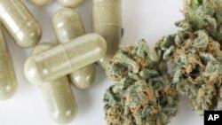 Cử tri tại các bang Oregon, Colorado, và Washington phải quyết định thêm về chuyện cho phép sử dụng chất cần sa như một loại thuốc.