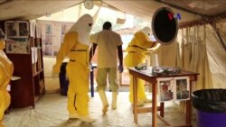 Curanderos contra el ébola