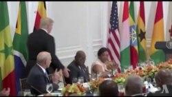 Discours de Donald Trump aux dirigeants africains (vidéo)